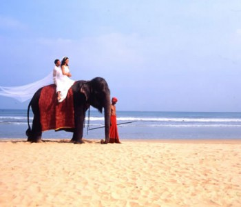 bentota-wedding-couple-elephant-ride.jpg